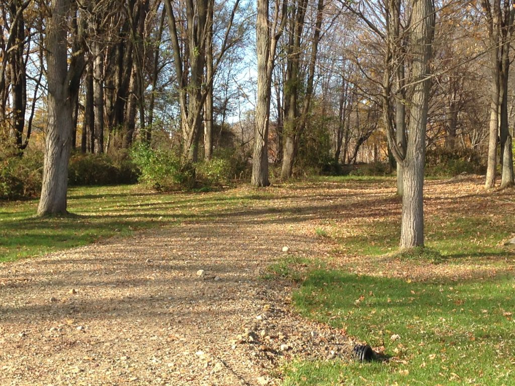 Lot #12 - 3.67 acres (122' x 584') Build your home on this large wooded lot that borders a cup-de-sac. This lot is level to step with a creek running through. Beautiful setting for you new home.